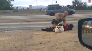 Cop beating